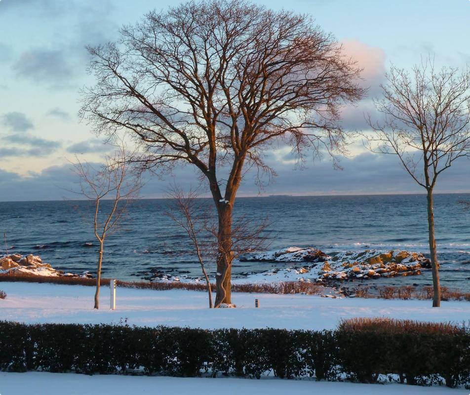 vintercamping med havudsigt på Bornholm