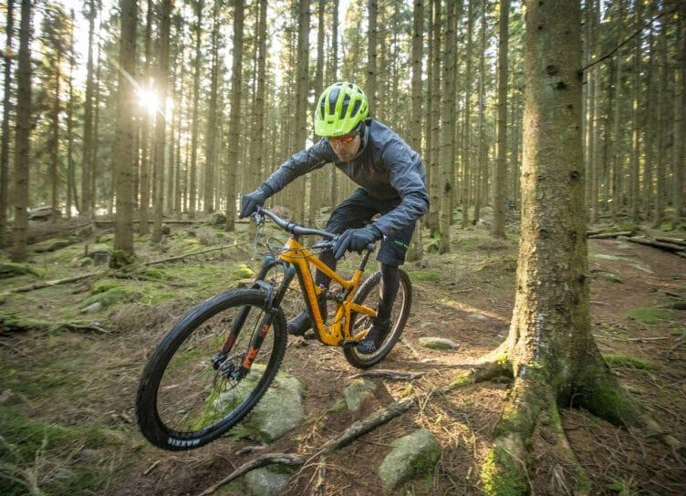 Cykelture i skoven på Bornholm