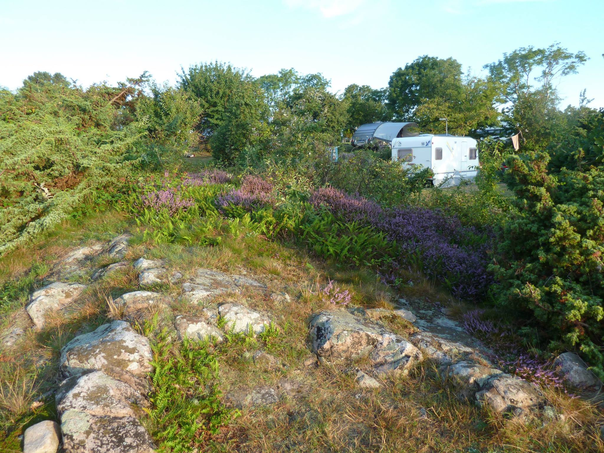 campingpladser sannes familiecamping
