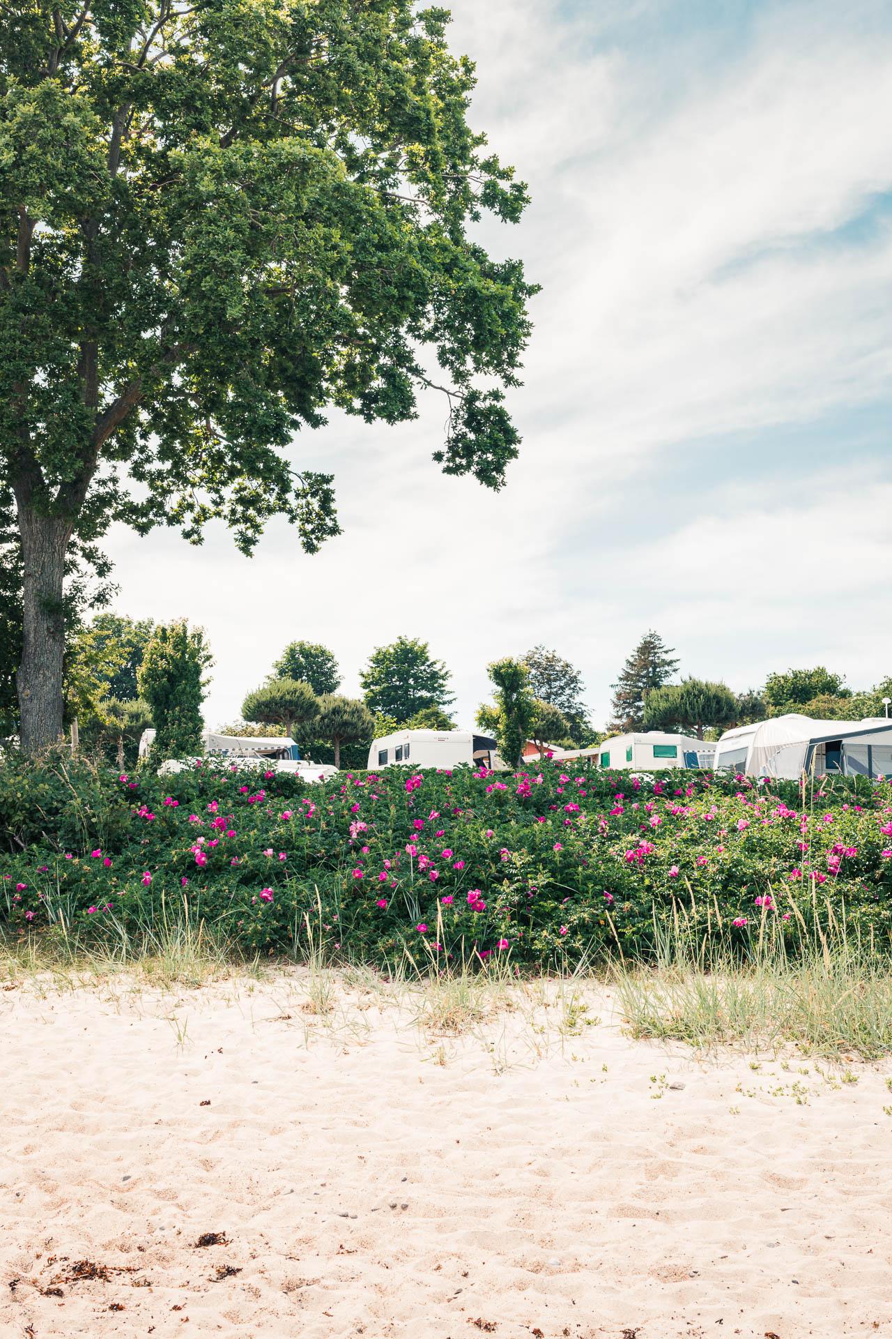 sannes-camping
